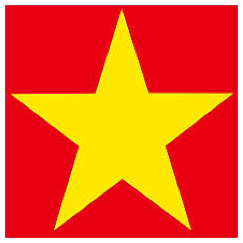 Vietnam verified PM account